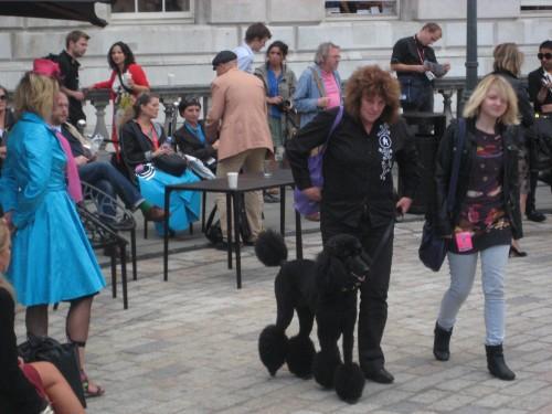 London Fashion Week Poodle